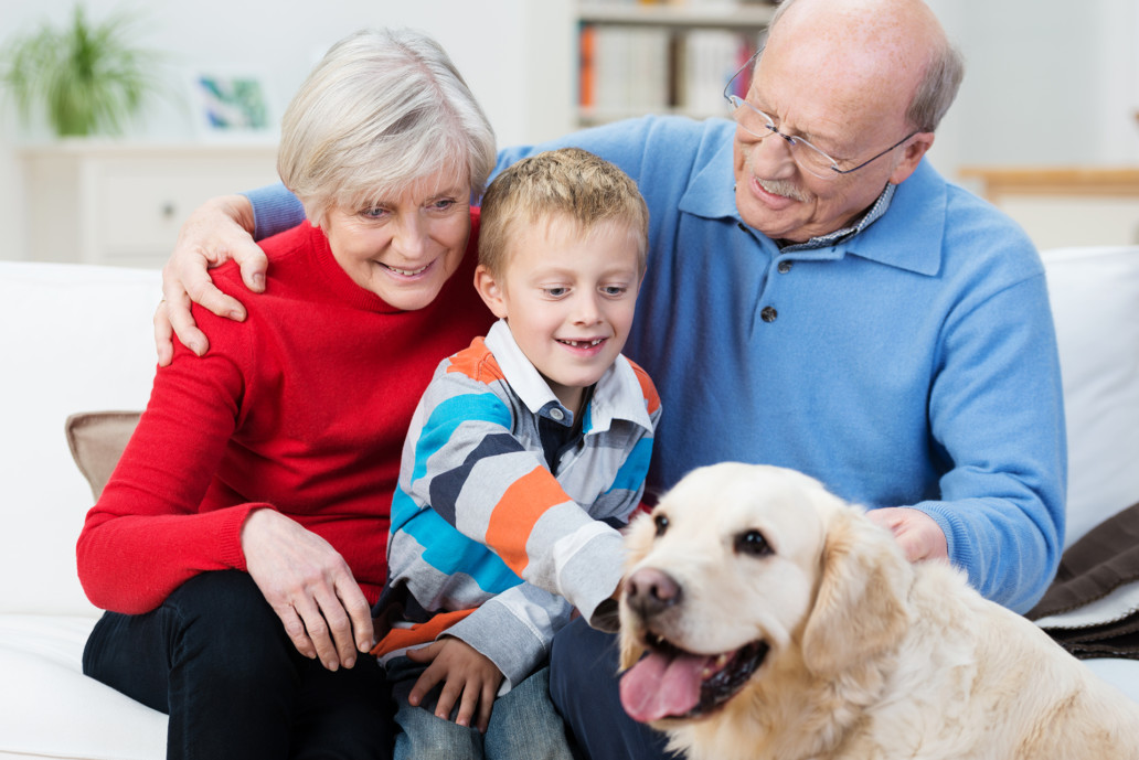 grandson with grandparents playing with a dog pet therapy gentle touch therapies holistic intervention Endless Journey Hospice Omaha Nebraska